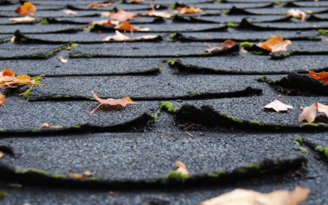 curling shingles can indicate that you need a new roof